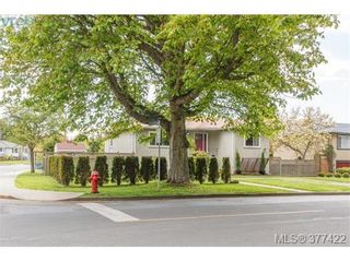 Photo 18: 1849 Gonzales Ave in VICTORIA: Vi Fairfield East House for sale (Victoria)  : MLS®# 757807