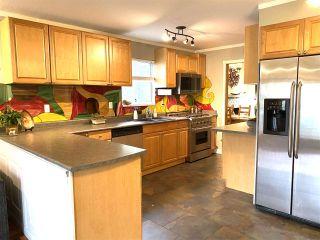 Photo 11: 13485 62 Avenue in Surrey: Panorama Ridge House for sale : MLS®# R2511820