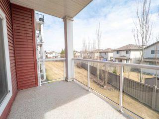 Photo 24: 215 226 MACEWAN Road in Edmonton: Zone 55 Condo for sale : MLS®# E4241529