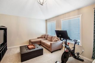 Photo 19: 459 Nolan Hill Drive NW in Calgary: Nolan Hill Detached for sale : MLS®# A1085176