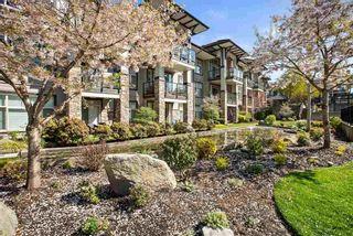 "Photo 17: 217 15185 36 Avenue in Surrey: Morgan Creek Condo for sale in ""Edgewater"" (South Surrey White Rock)  : MLS®# R2568692"