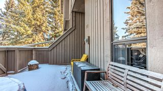 Photo 45: 22 10457 19 Street SW in Calgary: Braeside Row/Townhouse for sale : MLS®# A1074324