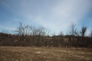Photo 2: 2nd Line in Roseneath: Land Only for sale : MLS®# 188329