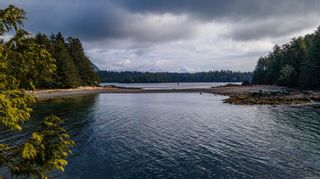 Photo 1: 863 Elina Rd in : PA Ucluelet Land for sale (Port Alberni)  : MLS®# 870302