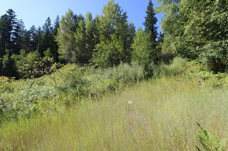 Photo 14: 26 2481 Squilax Anglemont Road: Lee Creek Land Only for sale (Shuswap)  : MLS®# 10116283