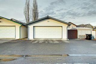 Photo 27: 131 MT APEX Green SE in Calgary: McKenzie Lake Detached for sale : MLS®# C4275506