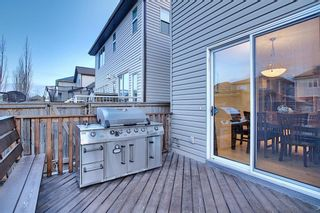 Photo 49: 1009 Prairie Springs Hill SW: Airdrie Detached for sale : MLS®# A1042404