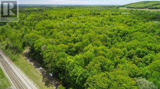 Photo 3: 1832 COUNTY RD. 40 Road in Quinte West: Vacant Land for sale : MLS®# 40154512