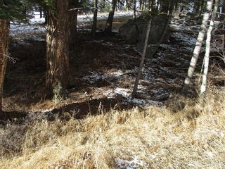 Photo 2: 2722 76 Street: Crowsnest Pass Land for sale : MLS®# A1053454