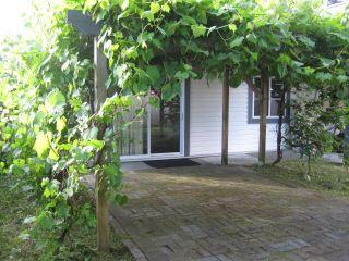 Photo 13: 20368 115 Avenue in Maple Ridge: Southwest Maple Ridge House for sale : MLS®# R2174452
