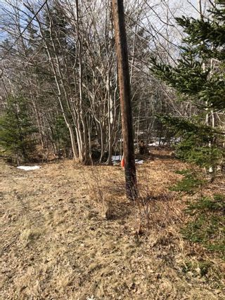 Photo 2: Lot Lighthouse Road in Bay View: 401-Digby County Vacant Land for sale (Annapolis Valley)  : MLS®# 202104918