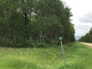 Photo 2: 84N Road in Brokenhead Rm: Vacant Land for sale : MLS®# 202001618