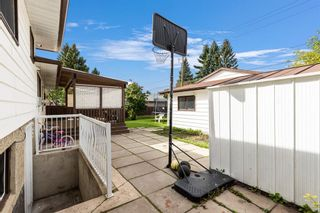 Photo 10: 4772 Rundlehorn Drive NE in Calgary: Rundle Detached for sale : MLS®# A1144252