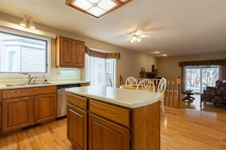 Photo 16: 263 DECHENE Road in Edmonton: Zone 20 House for sale : MLS®# E4229860