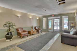 Photo 2: 4201 24 Hemlock Crescent SW in Calgary: Spruce Cliff Apartment for sale : MLS®# A1125895
