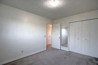 Photo 18: 37 Martingrove Way NE in Calgary: Martindale Detached for sale : MLS®# A1152102