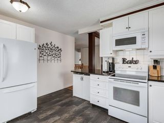 Photo 7: 44 MAITLAND Green NE in Calgary: Marlborough Park Detached for sale : MLS®# A1030134