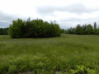 Photo 5: River John Road in Scotch Hill: 108-Rural Pictou County Vacant Land for sale (Northern Region)  : MLS®# 202115411