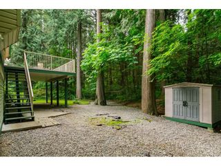 """Photo 35: 4067 199A Street in Langley: Brookswood Langley House for sale in """"BROOKSWOOD"""" : MLS®# R2461084"""