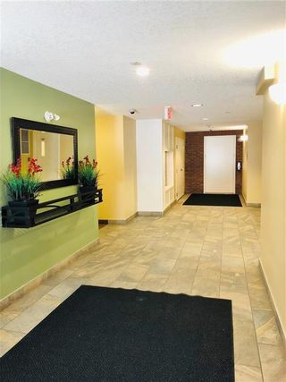 Photo 17: 2105 279 COPPERPOND Common SE in Calgary: Copperfield Apartment for sale : MLS®# C4296739