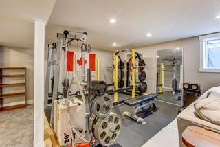 Photo 21: 4203 Dalhart Road NW in Calgary: Dalhousie Detached for sale : MLS®# A1143052