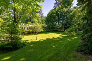Photo 52: 785 Evergreen Rd in : CR Campbell River Central House for sale (Campbell River)  : MLS®# 877473