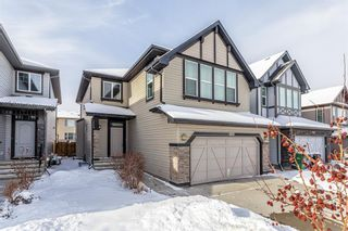 Photo 2: 1200 BRIGHTONCREST Common SE in Calgary: New Brighton Detached for sale : MLS®# A1066654