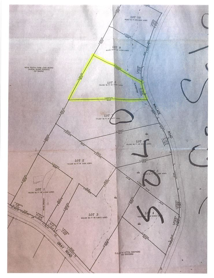 Main Photo: Lot 8 Wallace Road in Hazel Glen: 108-Rural Pictou County Vacant Land for sale (Northern Region)  : MLS®# 202008883