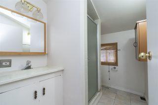 Photo 31: 205 Grandisle Point in Edmonton: Zone 57 House for sale : MLS®# E4247947