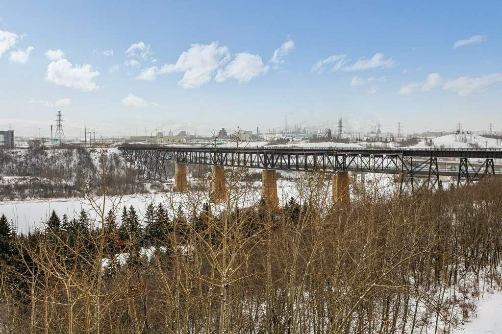 Main Photo: 403 1188 HYNDMAN Road in Edmonton: Zone 35 Condo for sale : MLS®# E4228866