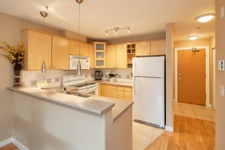 """Photo 10: 227 3122 ST JOHNS Street in Port Moody: Port Moody Centre Condo for sale in """"SONRISA"""" : MLS®# R2620860"""