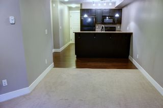 Photo 7: 110 30515 CARDINAL Avenue in Abbotsford: Abbotsford West Condo for sale : MLS®# R2119609