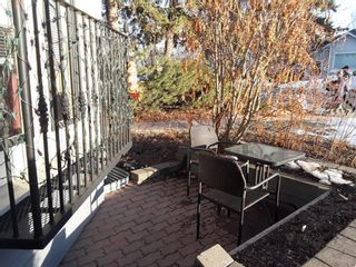 Photo 48: 232 2 Avenue NE in Calgary: Crescent Heights Detached for sale : MLS®# A1066844