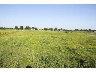 Photo 2: 262034 80 St E in DE WINTON: Rural Foothills M.D. Rural Land for sale : MLS®# C3631915