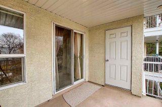 Photo 18: 201 11104 109 Avenue in Edmonton: Zone 08 Condo for sale : MLS®# E4241309