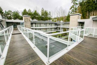 """Photo 18: 404 2733 ATLIN Place in Coquitlam: Coquitlam East Condo for sale in """"ATLIN COURT"""" : MLS®# R2232992"""