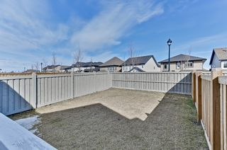 Photo 30: 4075 Allan Cres SW in Edmonton: Ambleside House Half Duplex for sale : MLS®# E4151549
