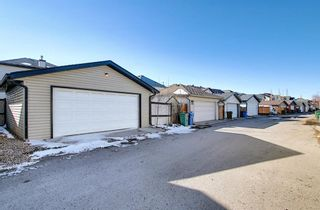 Photo 47: 253 Elgin Way SE in Calgary: McKenzie Towne Detached for sale : MLS®# A1087799