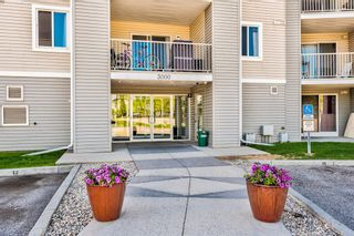 Photo 24: 3209 1620 70 Street SE in Calgary: Applewood Park Apartment for sale : MLS®# A1116068