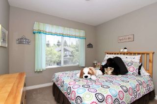 Photo 30: 10095 241A Street in Maple Ridge: Albion House for sale : MLS®# R2492970