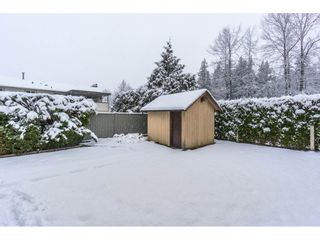 Photo 19: 26826 34TH Avenue in Langley: Aldergrove Langley House for sale : MLS®# R2141375