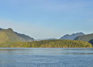 Photo 3: DL 1445 Dent Island in : Isl Small Islands (Campbell River Area) Land for sale (Islands)  : MLS®# 861220