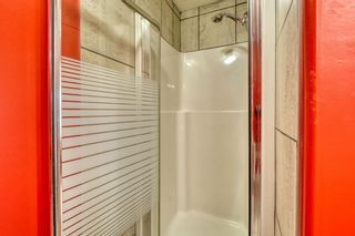 Photo 39: 143 Chapman Way SE in Calgary: Chaparral Detached for sale : MLS®# A1116023