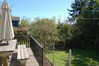 Photo 16: 3552 Calumet Ave in VICTORIA: SE Quadra House for sale (Saanich East)  : MLS®# 812576