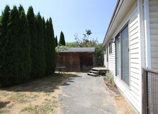 Photo 26: 41350 YARROW CENTRAL Road: Yarrow House for sale : MLS®# R2604550