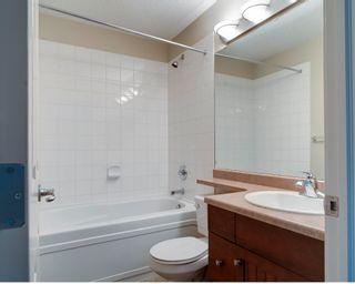 Photo 6: 436 78 B McKenney Avenue: St. Albert Condo for sale : MLS®# E4237934