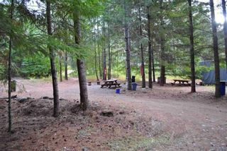 Photo 12: LOT 4 WILDERNESS ROAD in Hope: Agriculture for sale : MLS®# C8034954