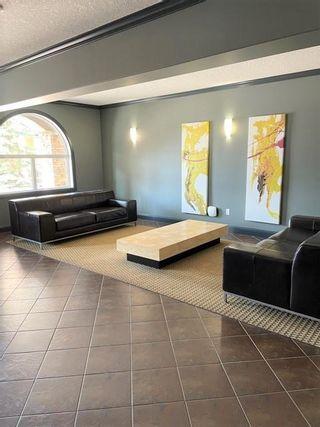 Photo 23: 311 14612 125 Street in Edmonton: Zone 27 Condo for sale : MLS®# E4254209