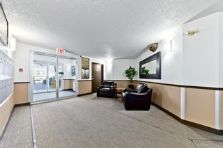 Photo 27: 103 11 Dover Point SE in Calgary: Dover Apartment for sale : MLS®# A1083330