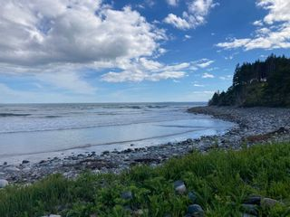 Photo 12: Lot 102 Point Road in Clam Bay: 35-Halifax County East Vacant Land for sale (Halifax-Dartmouth)  : MLS®# 202116103